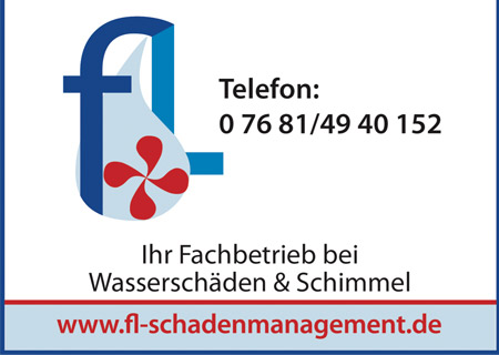 FL-Schadenmanagement